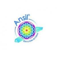 ANSIL